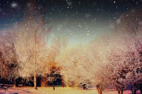 Žiema.